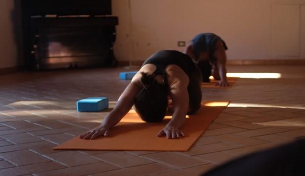 Postural Yoga